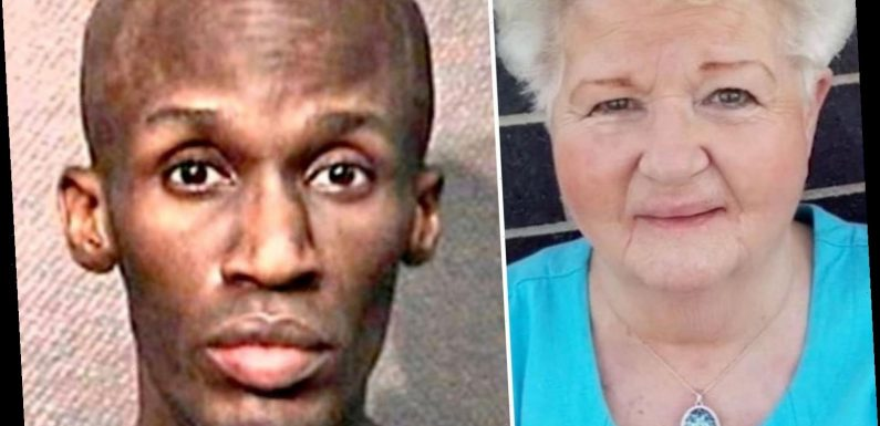 Man who brutally stabbed shopping grandmother to death before police killed him was out of jail despite 70 arrests – The Sun