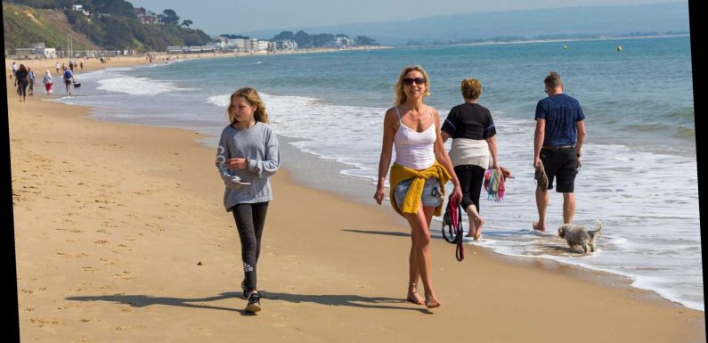 UK summer holidays CAN take place this year – if Brits can be persuaded they are safe, says tourism boss