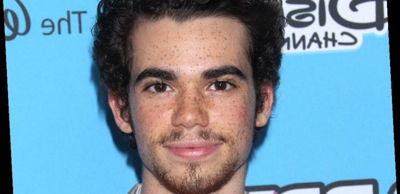 'Paradise City' Trailer Showcases The Late Cameron Boyce In His Final Project