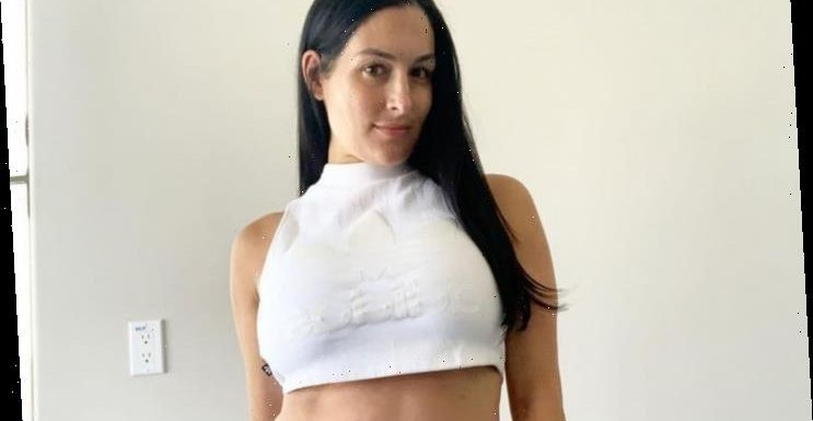 Nikki Bella Rushed to Hospital Due to Pregnancy Scare