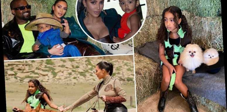 Billionaire Kim Kardashian shares photos of North's 7th birthday bash featuring horses, cowboy boots and puppies