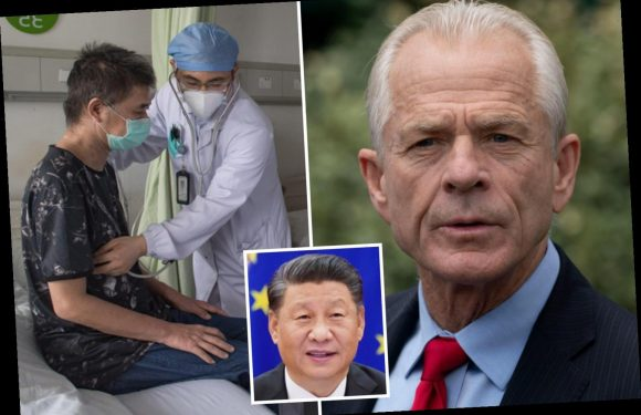 Trump trade adviser Peter Navarro says China allowed infected people to travel to 'seed and spread' coronavirus – The Sun