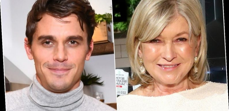 Martha Stewart and 'Queer Eye' Star Antoni Porowski's Instagram Feud, Explained