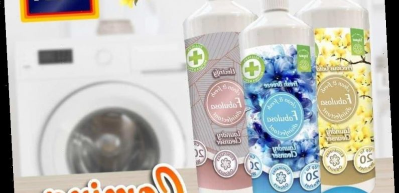Aldi's extending its 'Fabulosa' range to include laundry products –  & fans say it's rivals Zoflora but is MUCH cheaper – The Sun