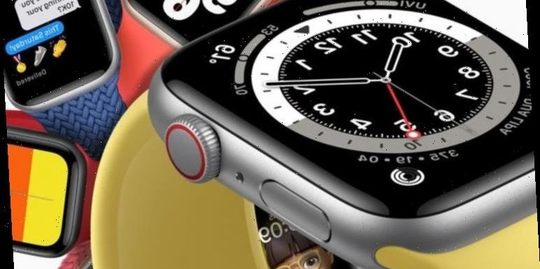 Apple Watch 6 and Apple SE launch today and here's our first look review