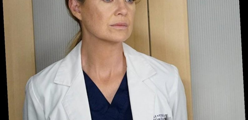Ellen Pompeo Reveals Her New Favorite Grey's Anatomy Couple After First Season 17 Table Read
