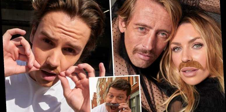 Abbey Clancy wears a moustache to join Peter Crouch, Mo Farah, Liam Payne and Dermot O'Leary to support Movember