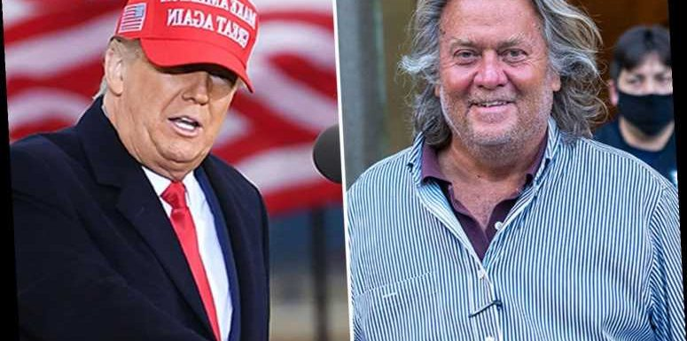 Donald Trump WILL run again for President in 2024 if he loses to Joe Biden, says Steve Bannon