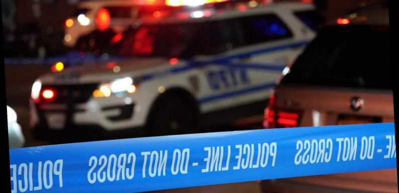 Man, 62, dies days after punch knocks him to the ground: cops