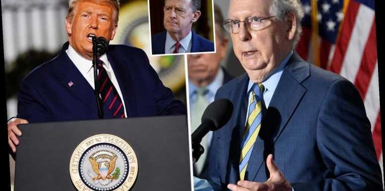 Mitch McConnell says 'EVERY legal vote' must be counted in veiled rebuke of Trump as GOP slams his 'cheating' claims
