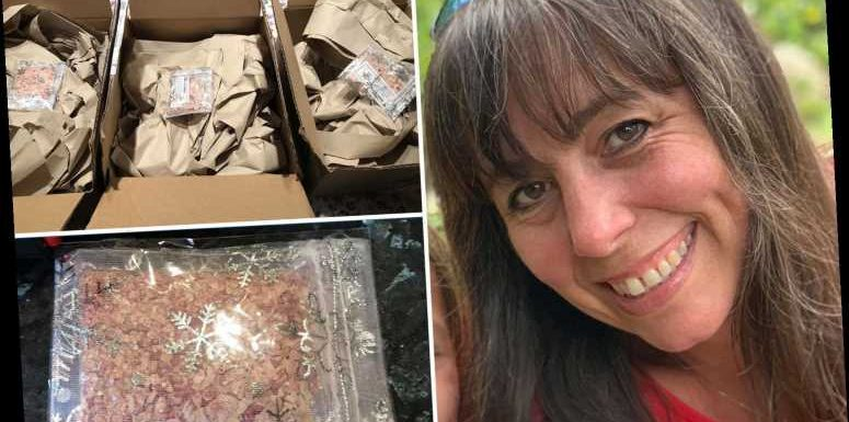 Mum slams Amazon for 'insane' overpackaging after three small sachets of 'reindeer food' arrive separately
