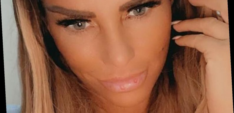 Katie Price fans ask 'what are the spots on your lips' as she poses for natural selfie