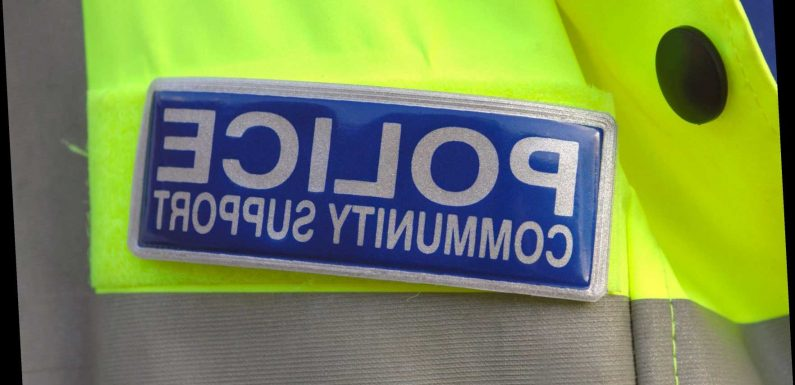 Police intelligence-gathering at risk as PCSO numbers slashed, Labour claims