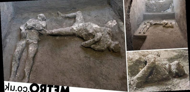 Pompeii dig unearths bodies of master and slave killed 2,000 years ago