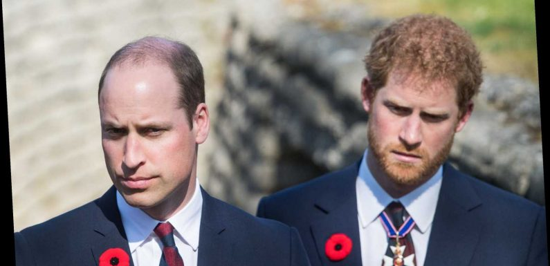 Please Enjoy Me Explaining Harry and William's Royal Rift to You in Truly Wild Detail