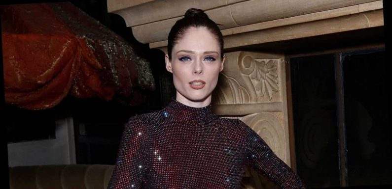 Coco Rocha Welcomed Baby No. 3