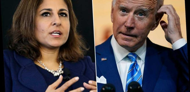 Biden OMB pick Neera Tanden spread conspiracy theory about Trump's 2016 win