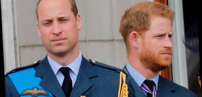 Princes Harry and William 'remain united' in support of BBC's Martin Bashir inquiry