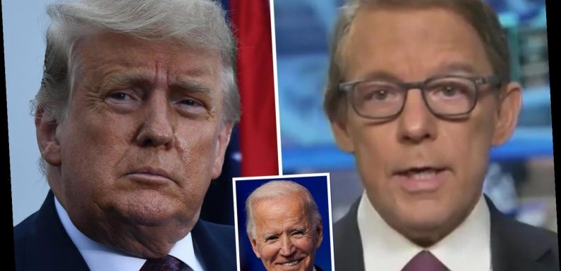 Fox News host Eric Shawn stunningly slams Trump and says he 'can't wrap his brain around the fact he lost to Biden'