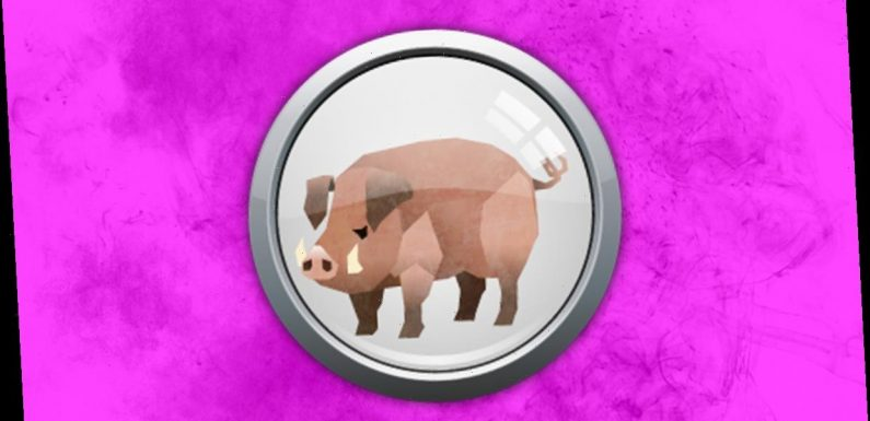 Pig weekly horoscope: What your Chinese zodiac sign means for you December 13 – 19