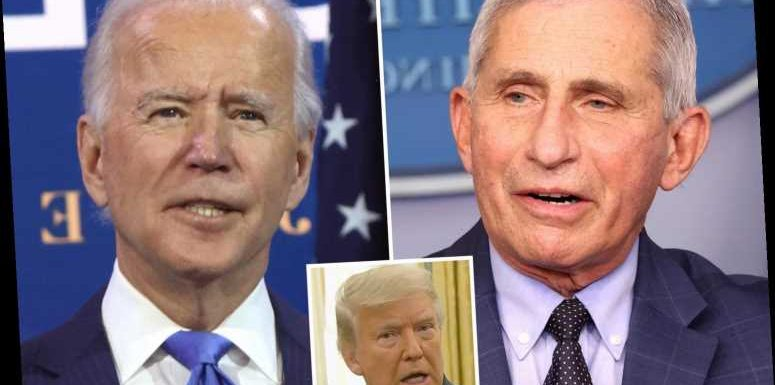 Fauci agreed to be Biden's medical adviser 'on the spot' as tensions between top doc and Trump mount over transition