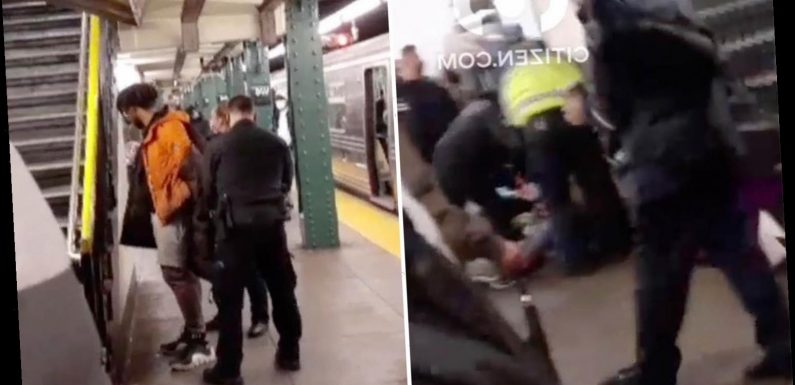 Woman suffers 'broken spine and neck' when stranger viciously shoved her into side of moving subway train