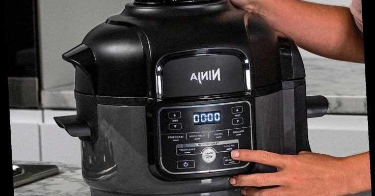 Ninja Foodi Mini 6-in-1 Multi-Cooker reviewed