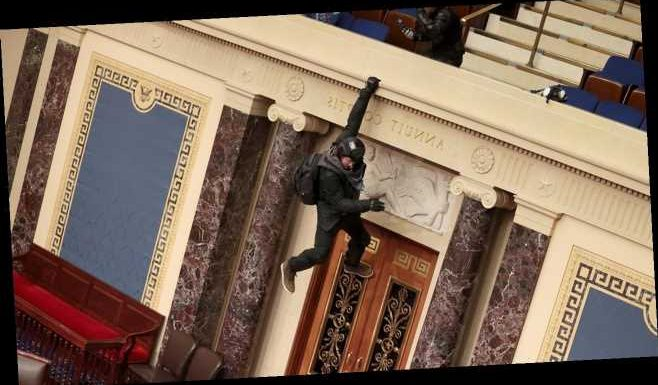 Capitol Hill rioter seen climbing down Senate balcony apologizes again