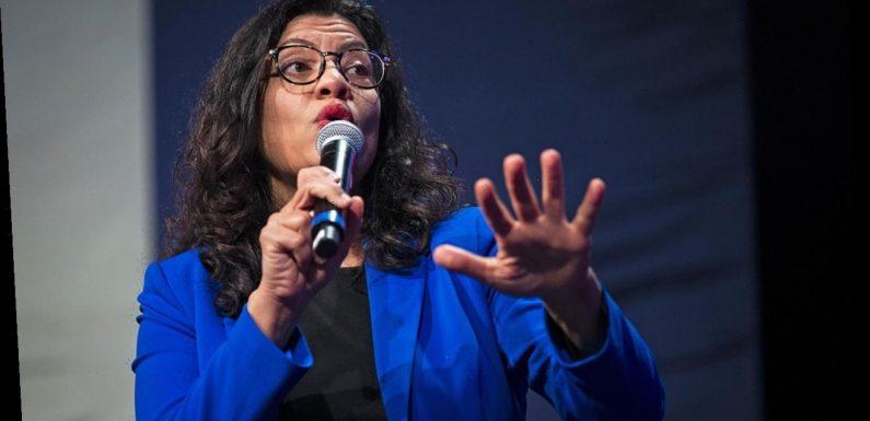 'Squad' member Rashida Tlaib says 'Israel is a racist state'