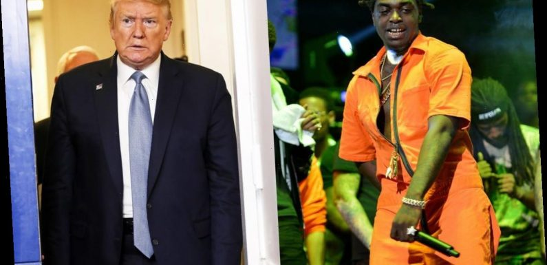 Kodak Black Deletes His Tweet About Donating $1M If He's Granted Pardon by Trump