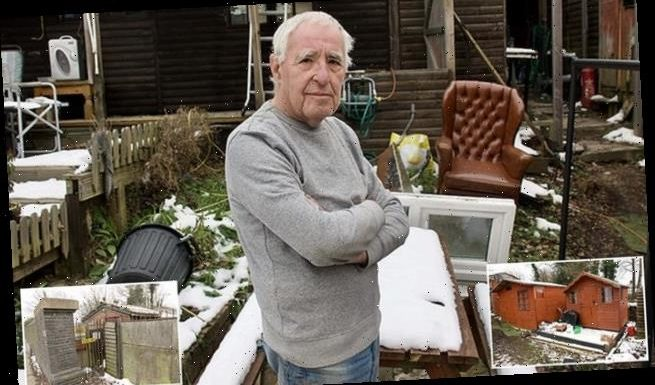 Councillor told to pull down unlawful garden sheds after complaints