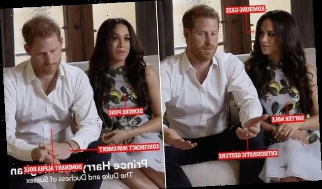 'US style' Prince Harry while 'demure' Meghan Markle