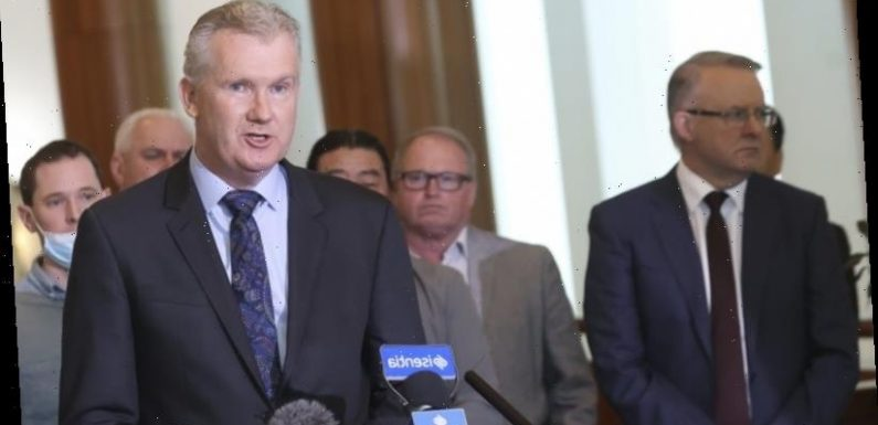 Labor suggests public servants tasked for political gain