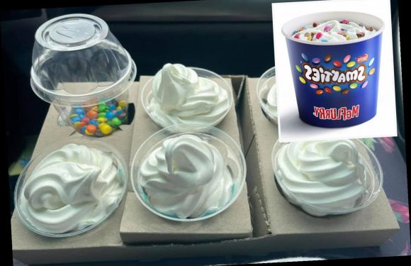 Mum's cheap McDonald's McFlurry hack dubbed a 'game changer' as she gets five for less than £3
