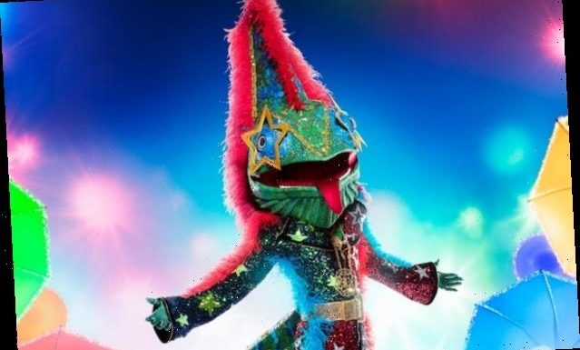'The Masked Singer': Surprise 'Wildcard' Contestants to Compete With Regulars on Season 5