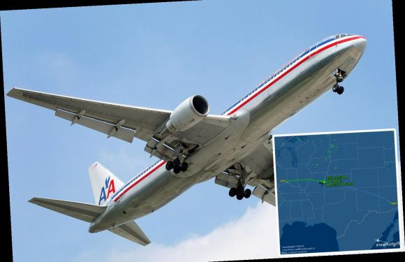 'UFO' mystery deepens as American Airlines doesn't deny spotting and says 'talk to the FBI'