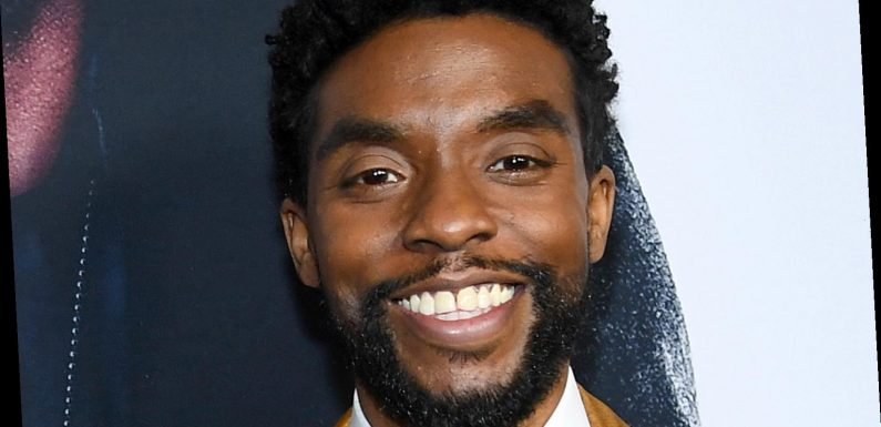 Chadwick Boseman's Net Worth: How Much Money Did The Star Have When He Died?