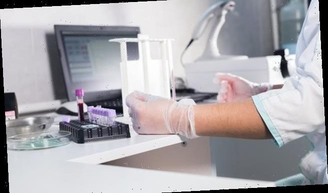 Blood tests could identify those at high risk of death from Covid
