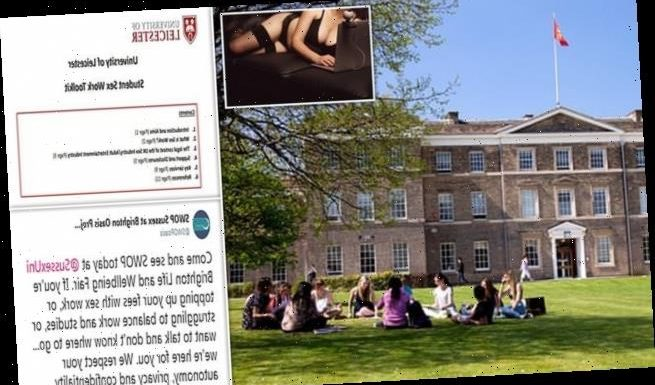 Woke universities are supporting sex work for their students