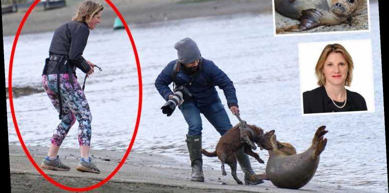 Owner of dog that mauled Freddie the seal Rebecca Sabben-Clare is an Oxford-educated lawyer