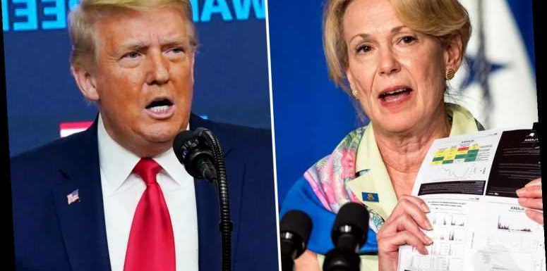 Dr Birx had 'very uncomfortable, very difficult' call with Trump after publicly warning about severity of Covid pandemic