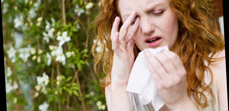 Start of hayfever season increases your risk of Covid, docs warn – even if you're NOT allergic