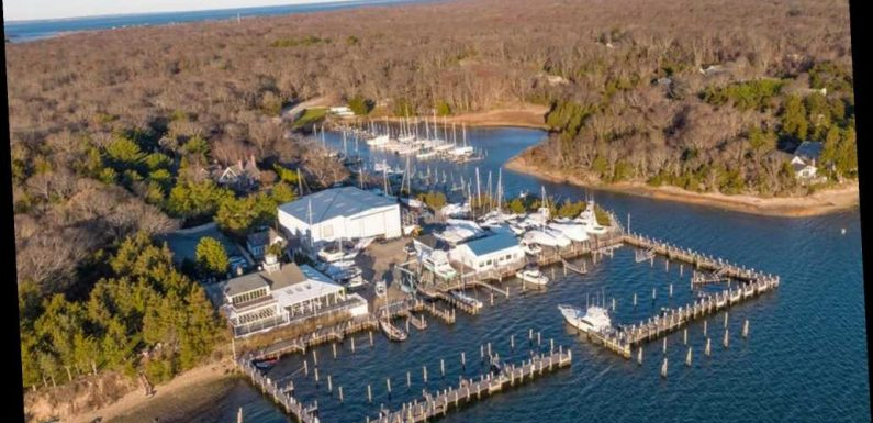 Hedge fund 'vampire' buys luxury Hamptons resort for  near $20 million