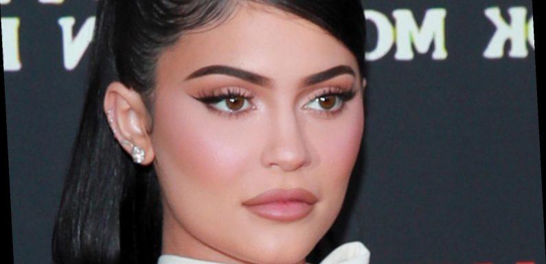 Kylie Jenner Answers Her Critics After GoFundMe Backlash
