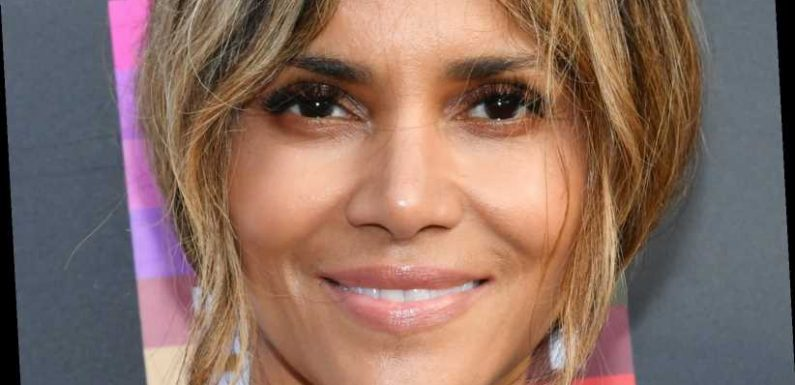 Divorce Lawyer Breaks Down Halle Berry's Child Support Situation