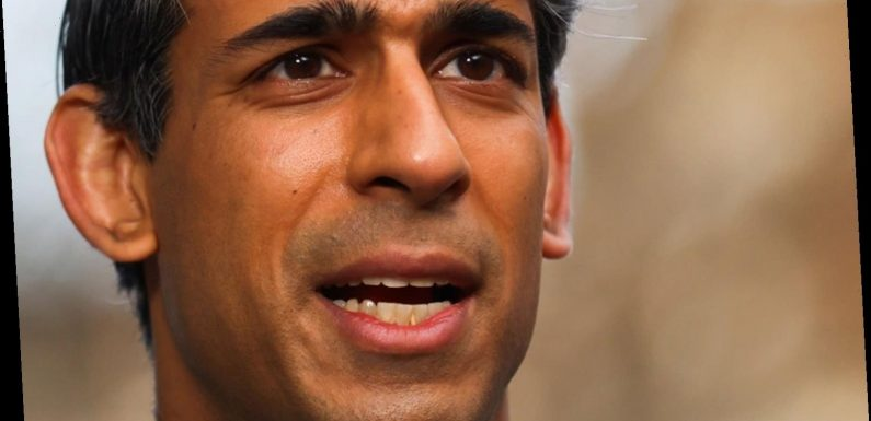 Chancellor Rishi Sunak urged to use Budget to create 250,000 green apprenticeships