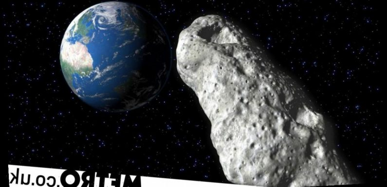 How asteroid dust helped us prove life's raw ingredients can evolve in space