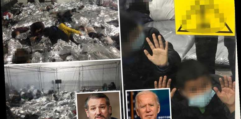 Biden officials 'tried to block pics' of migrant kids in 'cages' being revealed as Cruz exposes 'human suffering'