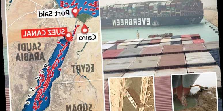 Amazing graphic shows how Suez Canal blockage has caused the traffic jam from hell with HUNDREDS of ships in gridlock
