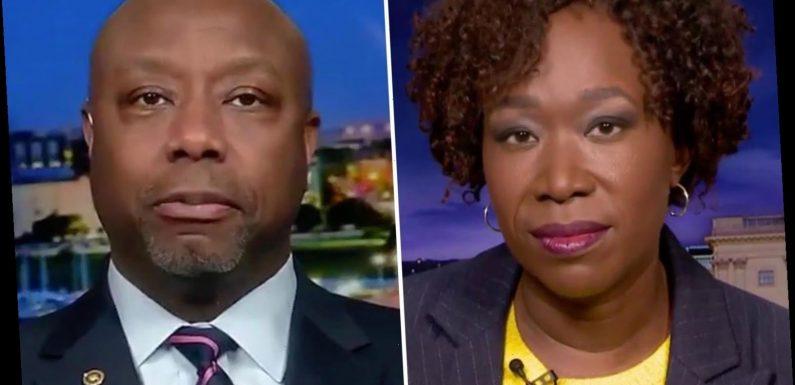 Sen Tim Scott says 'woke supremacy is as bad as white supremacy' as he blasts MSNBC's Joy Reid for calling him GOP prop